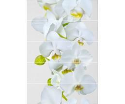 Флер Декор ВС7ФЕ001 цветы 249x364