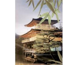 Бамбук Панно из 2-х плиток  Дом 364х498  ПН7БМ4