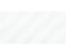 Confetti Blanco Декор 24,9x50,0