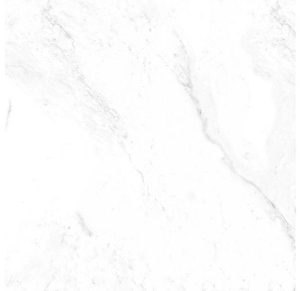 POLARIS PL01 неполир 600*600*10