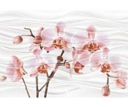 Орхидея Декор 28*40