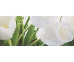 Tulip 2W плитка-декор 20*50