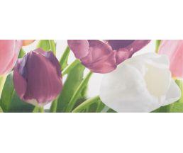 Tulip 2 PN плитка-декор 20*50