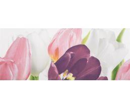 Tulip 1PN плитка-декор 20*50