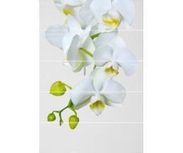 Флер Декор ВС7ФЕ021 цветы 249x364