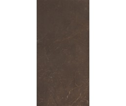 Marble Marron Плитка настенная 249*500