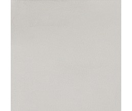 LIMESTONE светло-серый ректификат 60*60
