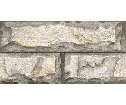 Dolomite Grey 300*600