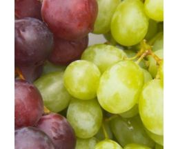 14-00-55-140-7 Толедо декор  Виноград  20*20