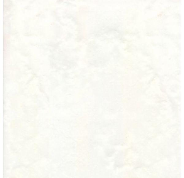 10-00-019-05 Толедо бел. 20*20