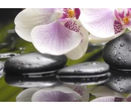 Азалия Орхидея панно часть 3  25*35